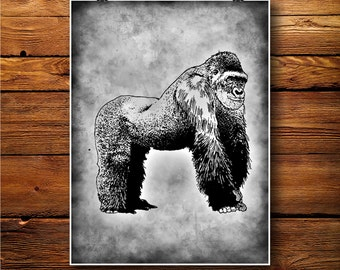Gorilla Print, Ape Decor, Monkey Poster, Vintage Art  BW593