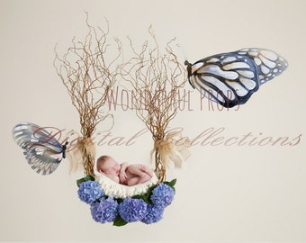 Digital Newborn Photography Prop Backdrop - Butterfly Hanging Nest