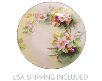 Antique Limoges Plate by D & Co Hand Painted 1894-1900