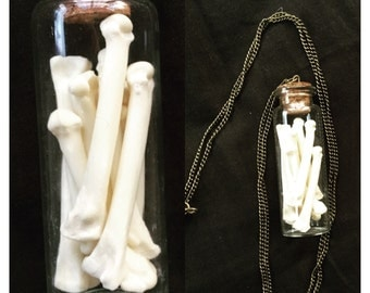 Rodent femur necklace