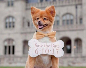 Save the Date Sign, Save the Date, Engagement, Engagement sign, Save the date dog sign, save the date bone sign, bone sign, wedding sign,