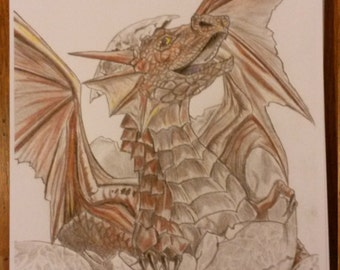 My Drawing Of A Dragon Hatchling.