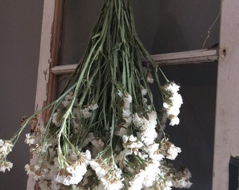Dried White Statice Bouquet