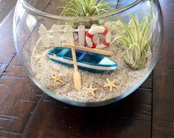 Air Plant Terrarium, Beach Terrarium, Glass Terrarium, DIY Terrarium, Glass Terrarium with Air Plant, Birthday Gift, Desk Warming Gift