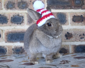 Christmas beanies for bunnies, pet rabbit beanies, red and white rabbit Christmas hat, pet rabbit clothes and accessories, Christmas