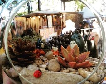 Four Seasons: Autumn Totoro Terrarium