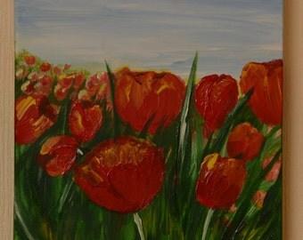 field of tulips 1