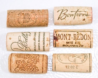 Cork Magnets set of 6