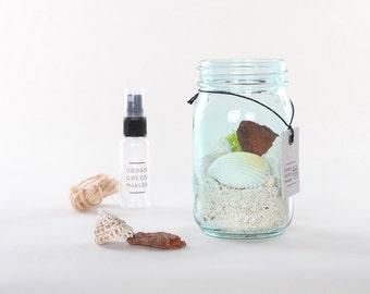 UGM - Vintage Glass Jar Terrarium Kit #3