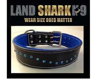 Black Leather Dog Collar with Soft Royal Blue Suede Lining & Blue Crystals