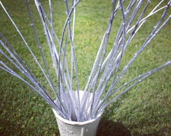 Silver Willow Branches for floral design/ ECO BRANCHES/Branches/ HOME decor/ Craft projects/ Table decoration/ Home composition/