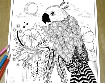 Gorgeous Parrot - Adult Coloring Page Print