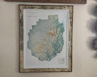 Adirondack Park birch bark framed