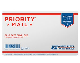 Priority Mail Small Flat Rate Envelope