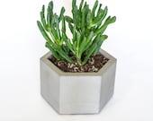 Hexagon Succulent Planter / Concrete Succulent Planter / Cactus Planter