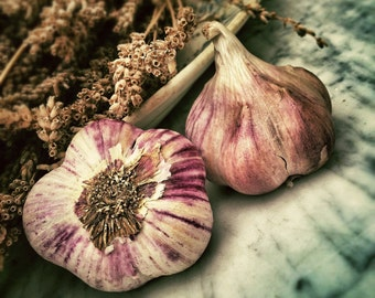 Garlic - Food - Food Photo - Garlic Photo - Still Life Photo - Kitchen Photography - Digital Photo - Instant Download - Dining Room Art