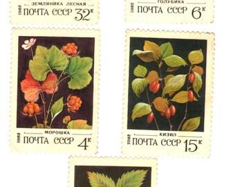 USSR 1982 Wild Berries