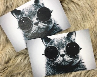 Hipster Cat Stickers