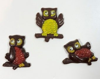 Set of vintage plastic owl magnets with googly eyes