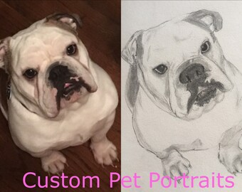 Custom Pet Portraits Graphite Drawing Framed Any Animal