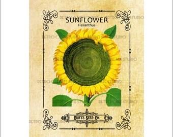 Digital Download Vintage Sunflower Seed Packet Illustration Vegetable Burlap Transfer Clip Art; 1006