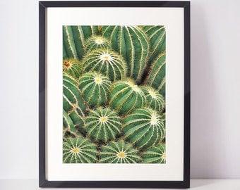 SALE - 50% cactus art print, instant download, 20x30, 18x24, 16x20, A2.