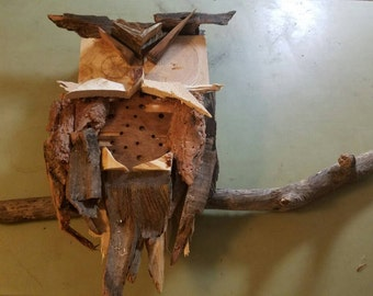 The Horned Wooden Owl