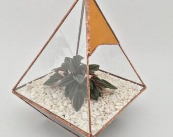 Delightful coloured handmade glass terrarium planter cacti / air plants / plants