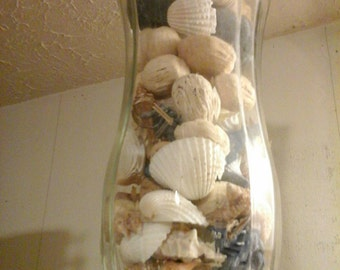 Vase With Shells