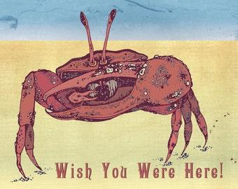 Crab On The Beach A6 Postcard