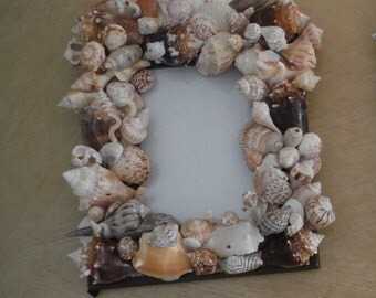 Seashell Picture Frame made from the Gulf of Mexico