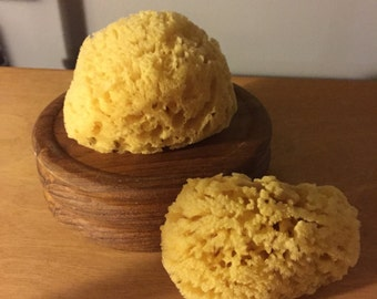 All Natural Dead Sea Sponge SHIPS FREE!