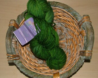 Dream in Color Classy Hand Painted Yarn Made in USA Color No VM150 Happy Forest Crochet Knit