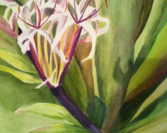 Tropical Watercolor Flower