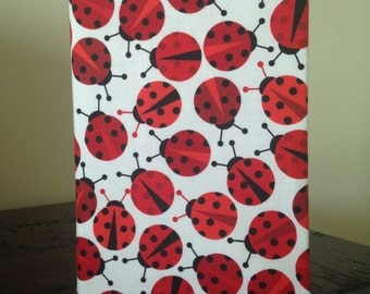 Big Book Cover-Ladybugs!
