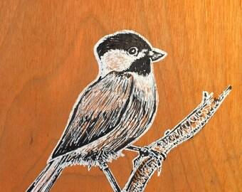 Original hand drawn Chickadee