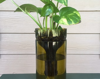 Wine bottle planter/Self watering plant/ upcycled wine bottle