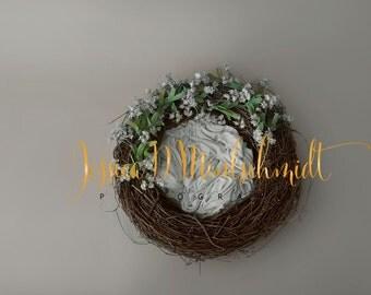 NEWBORN DIGITAL BACKDROP: Gray Floral Nest
