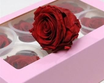 6 preserved roses box