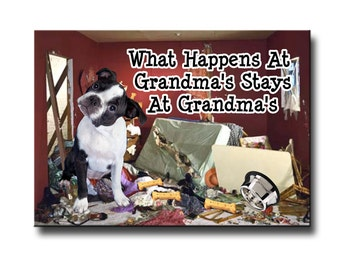Boston Terrier What Happens at Grandmas Fridge Magnet No 3