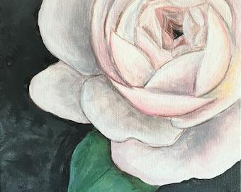 Garden Rose 8x8 Original Acrylic Painting