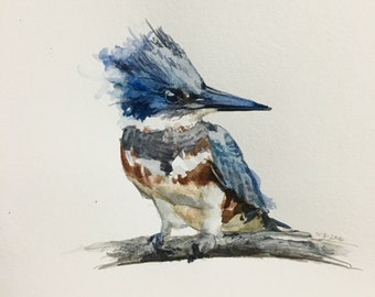 "Kingfisher #2, 6""x6"""