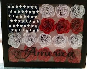 America rose frame 8x10