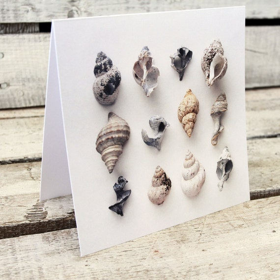 WHELKS greeting card