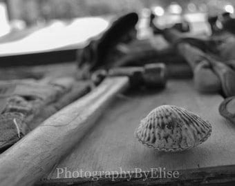Shell (Black and White)
