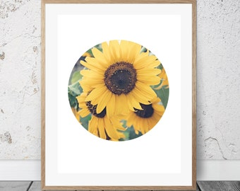Sunflowers, Digital Art, Circle Art, Yellow, Summertime, Nature Art