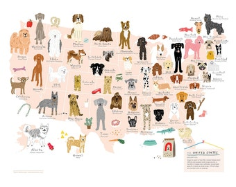 Dogs of the United States - USA Map Print - Art Print 12x16 - Poster