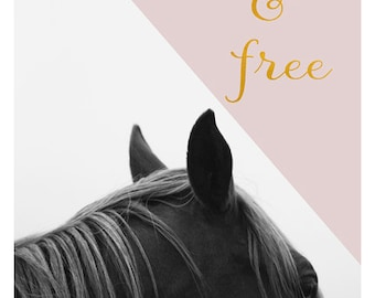Horse Photograph - Nature Photography - Black and White Art - Pink Print - Wild & Free - Typography Print - Modern - Motivational Quote