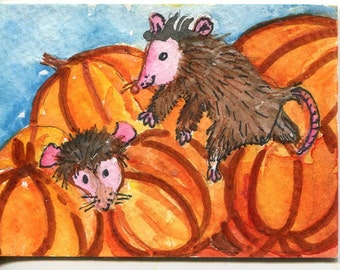 Original ACEO Possums Pumpkins Watercolor Painting original. Opossum Art Card, Possums in pumpkin patch, small animal art