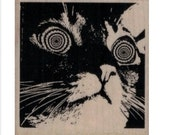 rubber stamp Hypnotic Cat  stamps no19908 scrapbooking supplies stamps kitten